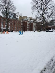 snowday1Feb11