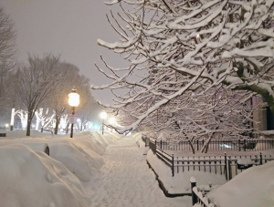 boston_2015_winter_landscape_610